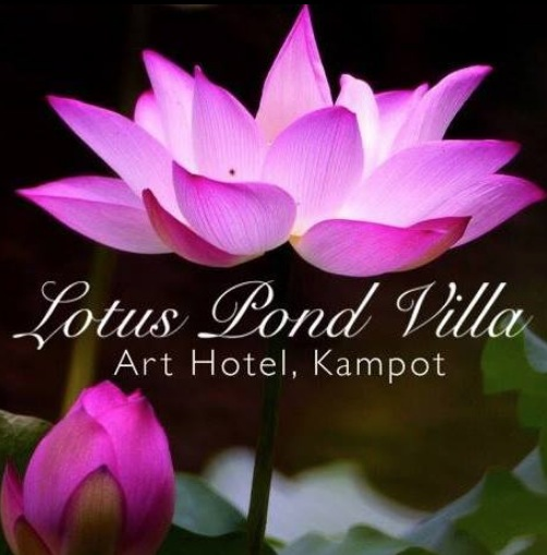 LOTUS POND VILLA & ART HOTEL